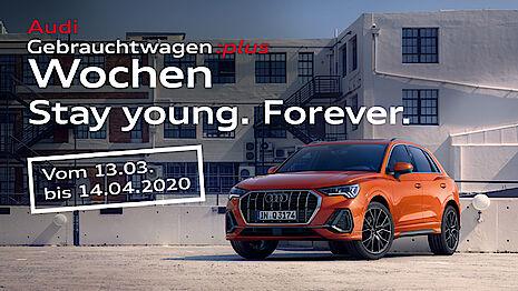 Audi Gebrauchtwagen Angebote bei Senger